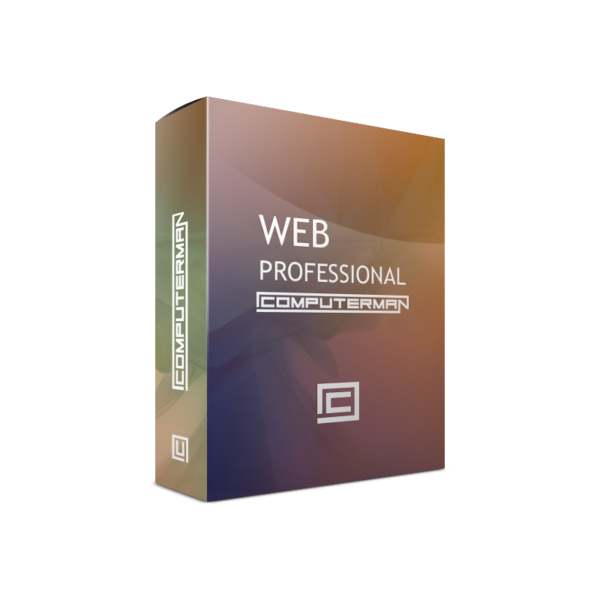 web_professional_hosting
